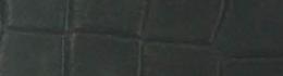 GIACOMO 03