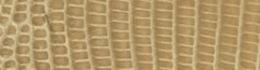 D 345